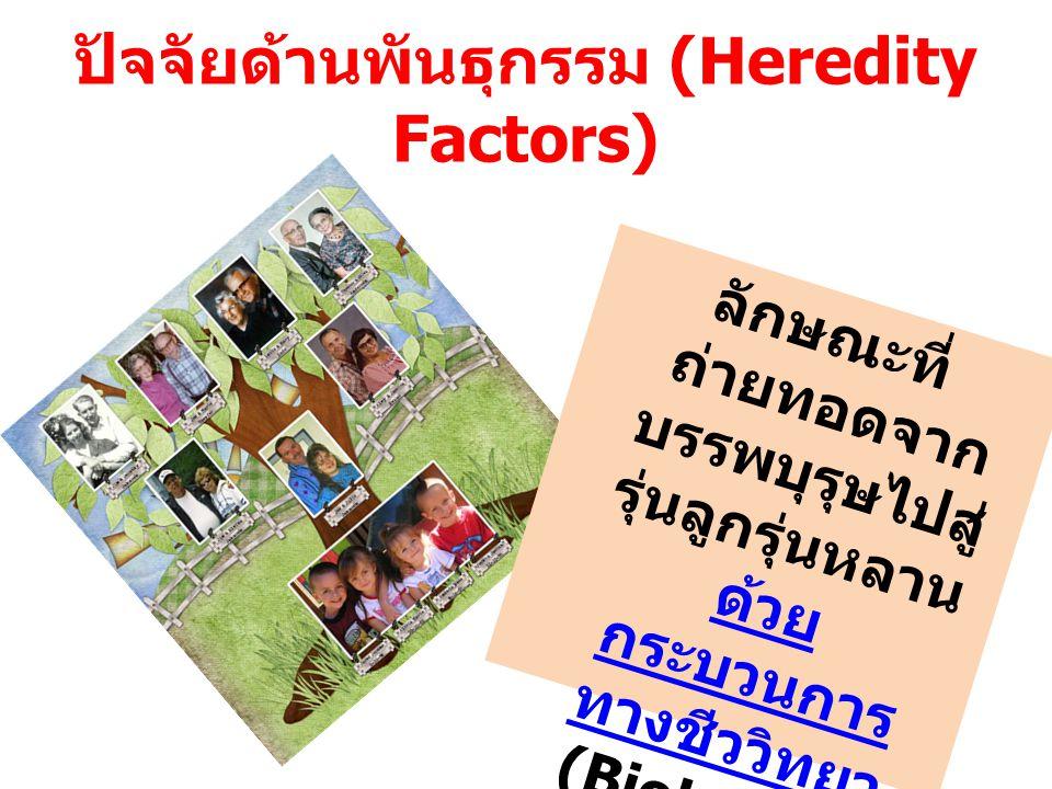 ปัจจัยด้านพันธุกรรม (Heredity Factors)