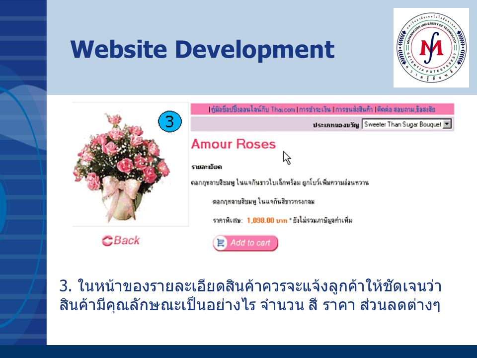 Website Development 3.