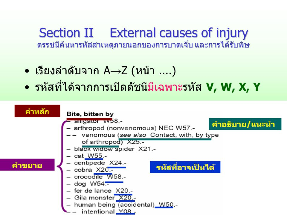 Section II External causes of injury ดรรชนีค้นหารหัสสาเหตุภายนอกของการบาดเจ็บ และการได้รับพิษ