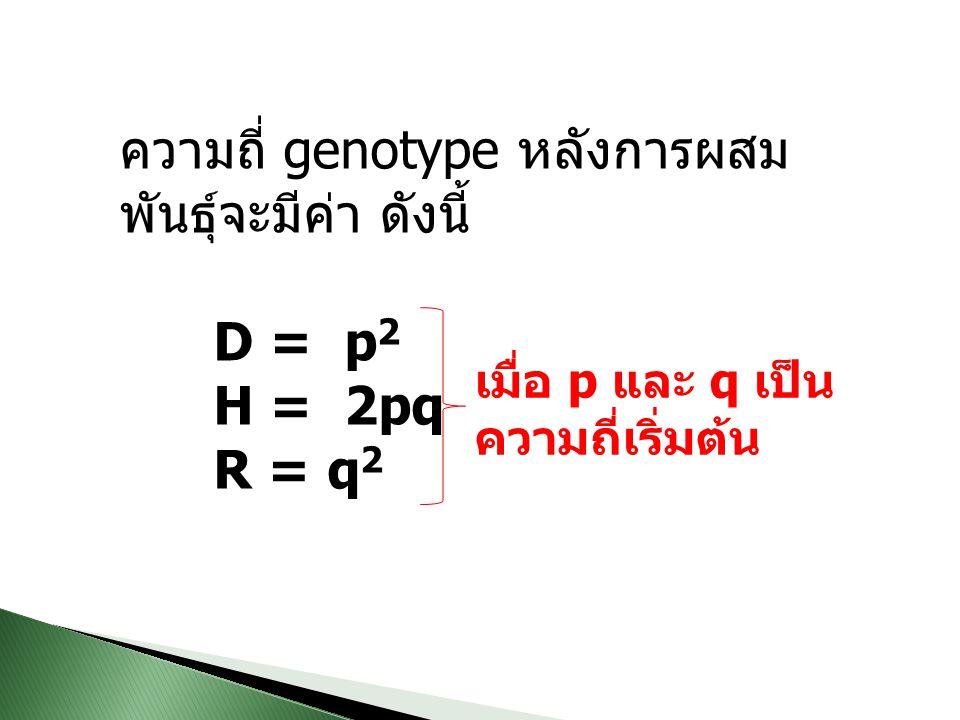 ความถี่ genotype หลังการผสมพันธุ์จะมีค่า ดังนี้