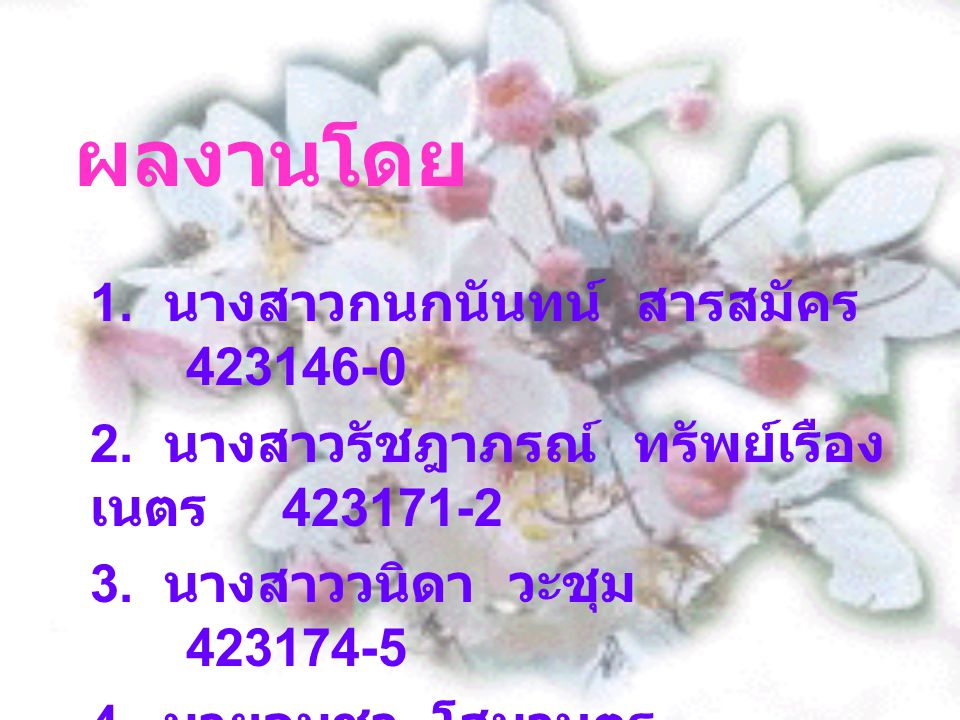 ผลงานโดย 1. นางสาวกนกนันทน์ สารสมัคร 423146-0