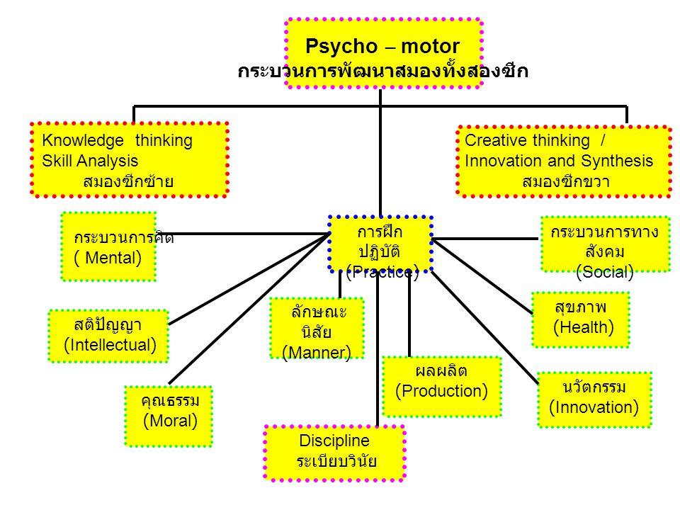 กระบวนการพัฒนาสมองทั้งสองซีก