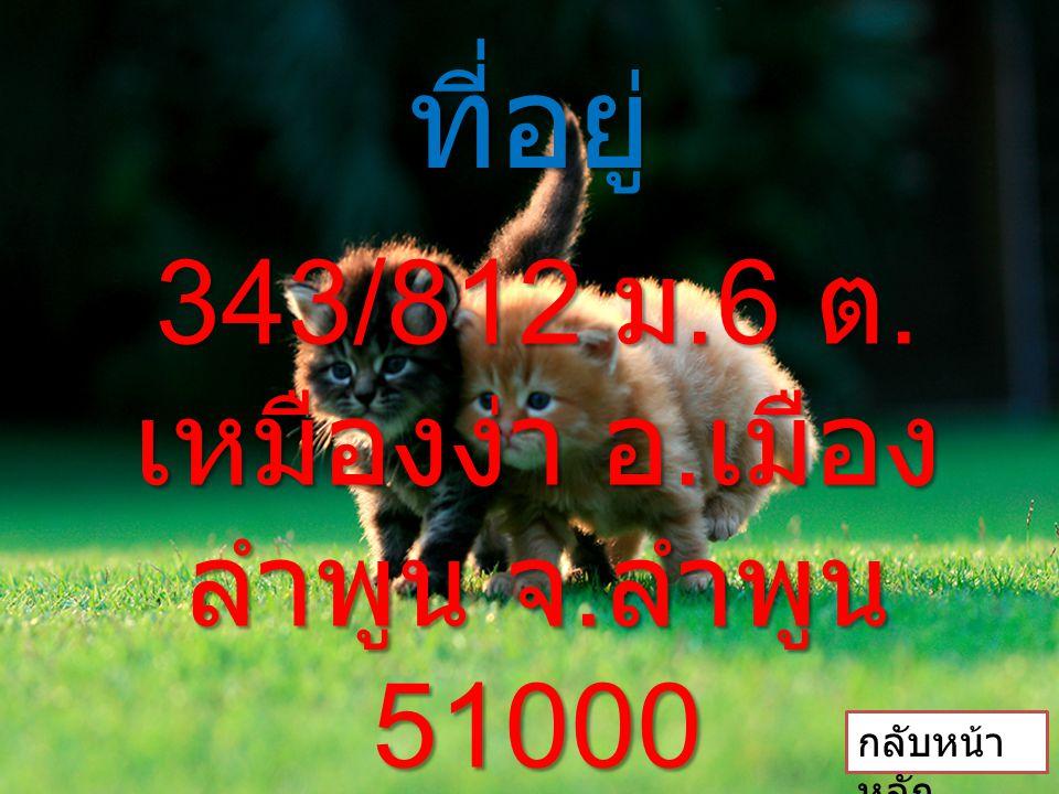 343/812 ม.6 ต.เหมืองง่า อ.เมืองลำพูน จ.ลำพูน 51000