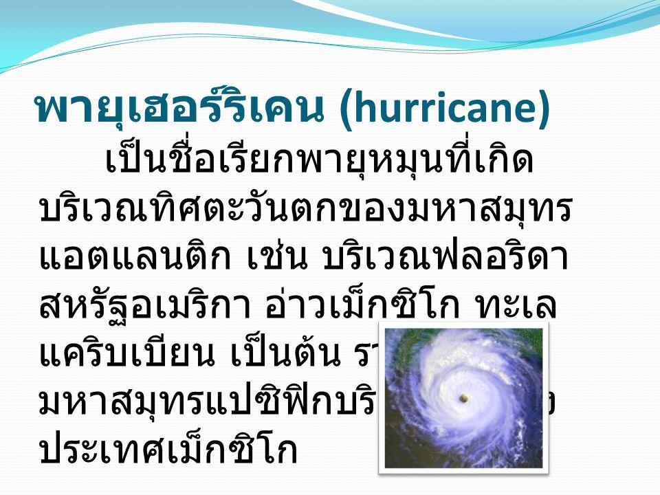 พายุเฮอร์ริเคน (hurricane)