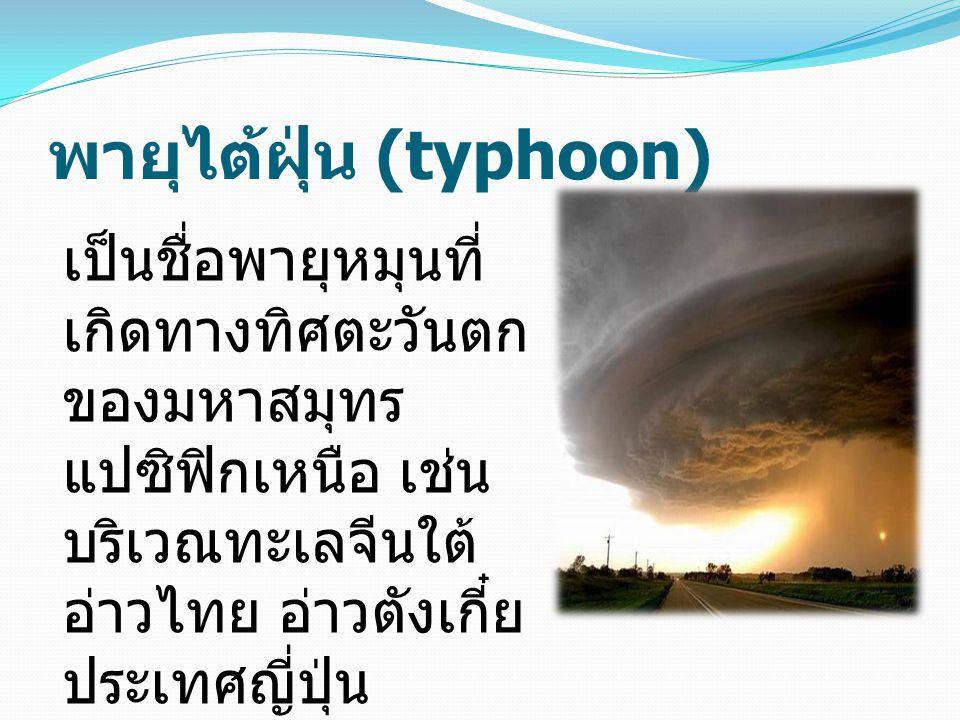 พายุไต้ฝุ่น (typhoon)