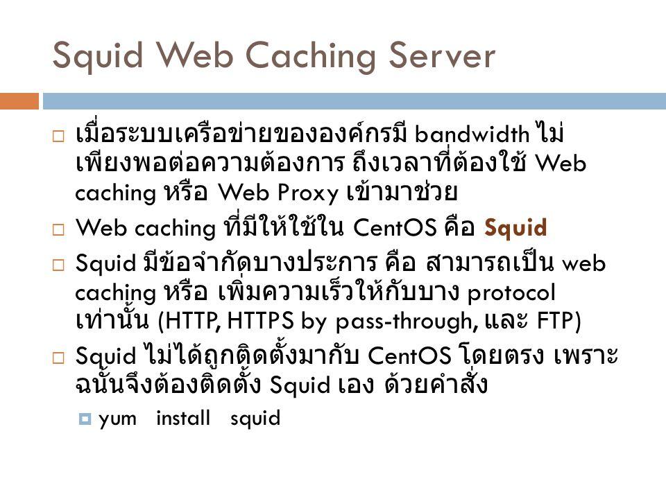 Squid Web Caching Server