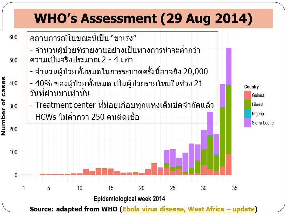WHO's Assessment (29 Aug 2014)
