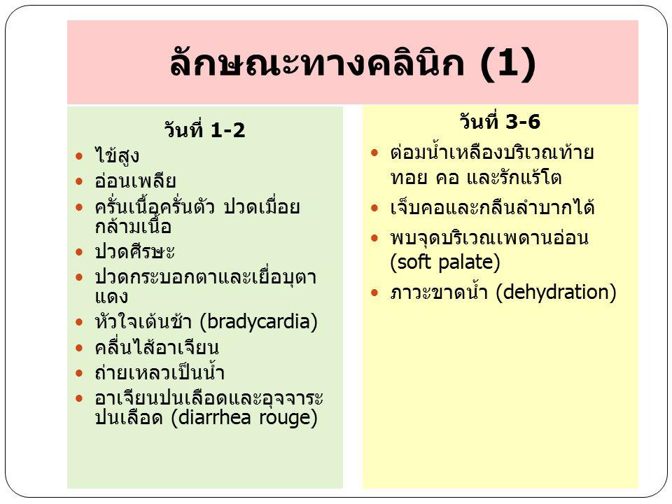 ลักษณะทางคลินิก (1) วันที่ 3-6 วันที่ 1-2