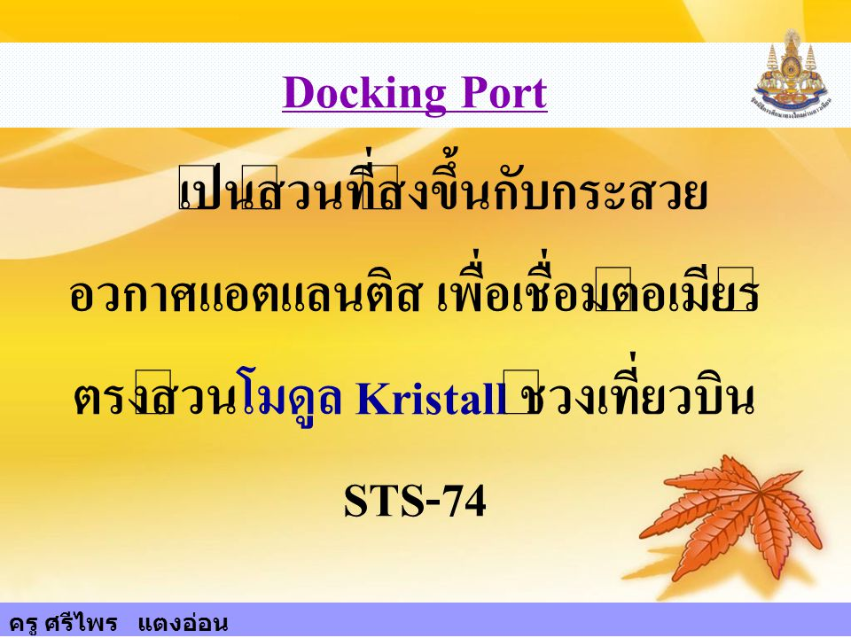 Docking Port เป็นส่วนที่ส่งขึ้นกับกระสวยอวกาศแอตแลนติส เพื่อเชื่อมต่อเมียร์ตรงส่วนโมดูล Kristall ช่วงเที่ยวบิน STS-74.