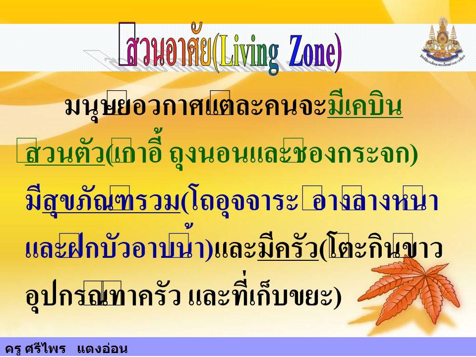 ส่วนอาศัย(Living Zone)