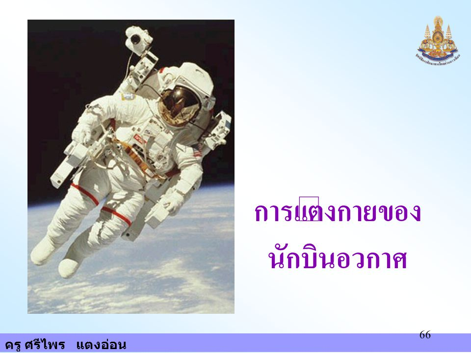 การแต่งกายของนักบินอวกาศ