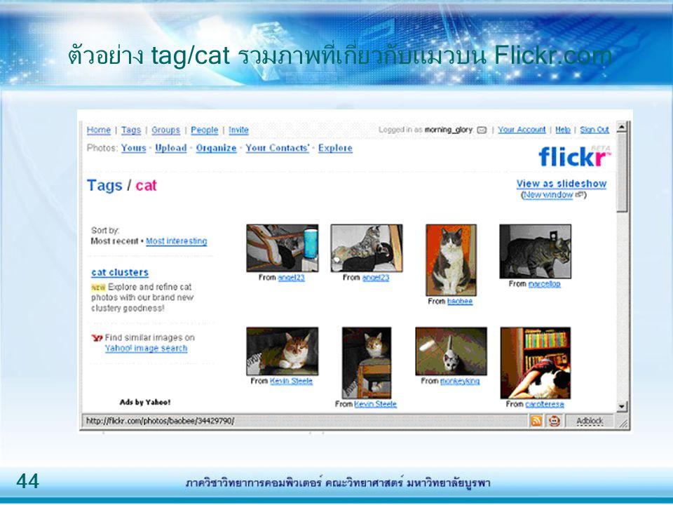ตัวอย่าง tag/cat รวมภาพที่เกี่ยวกับแมวบน Flickr.com
