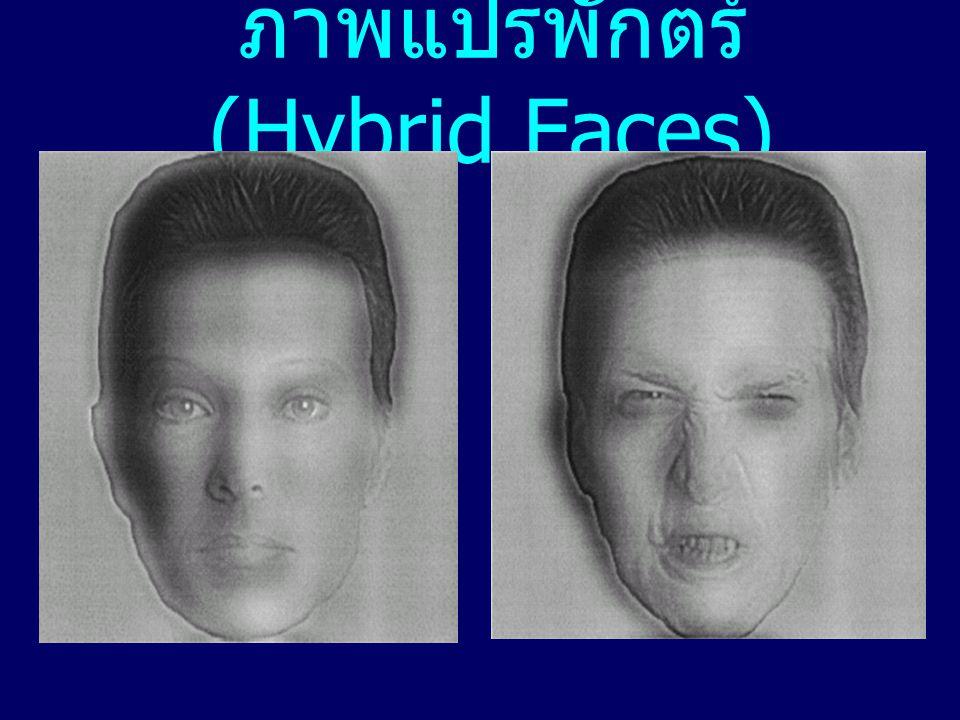 ภาพแปรพักตร์ (Hybrid Faces)