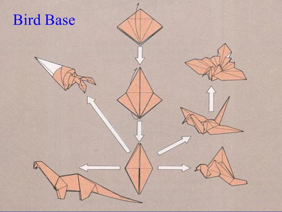 Bird Base