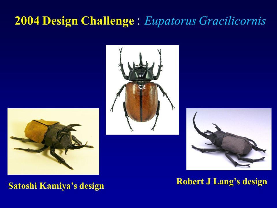 2004 Design Challenge : Eupatorus Gracilicornis