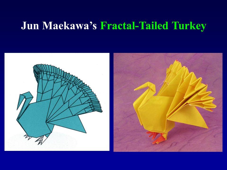 Jun Maekawa's Fractal-Tailed Turkey