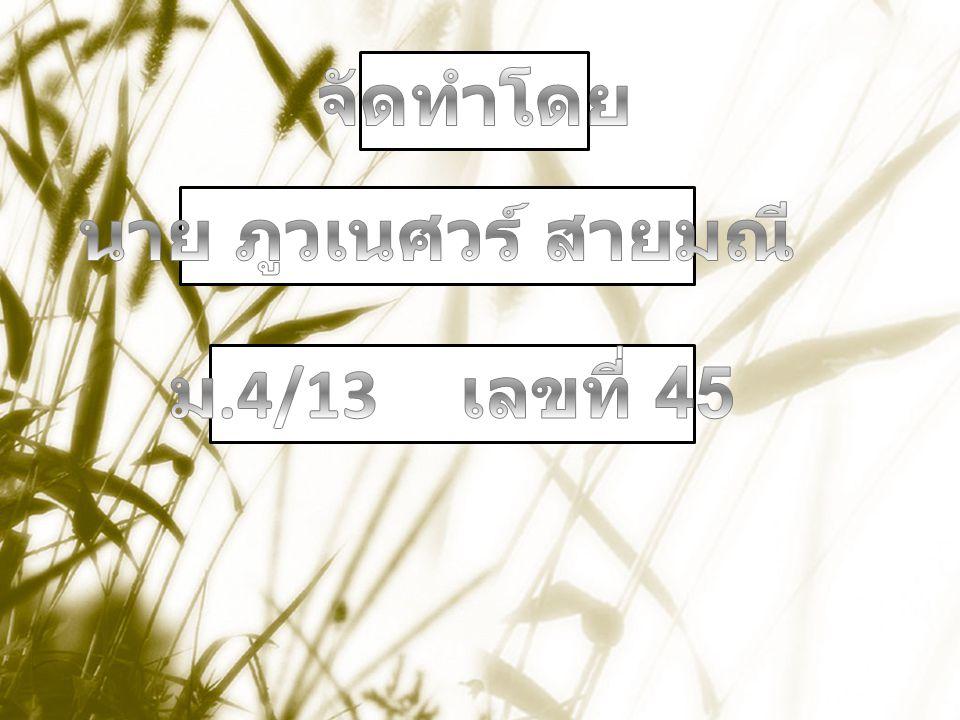 จัดทำโดย นาย ภูวเนศวร์ สายมณี ม.4/13 เลขที่ 45