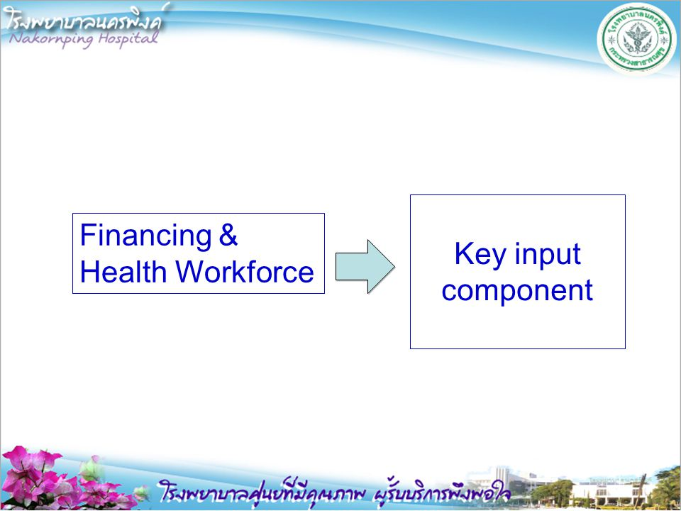 Key input component Financing & Health Workforce