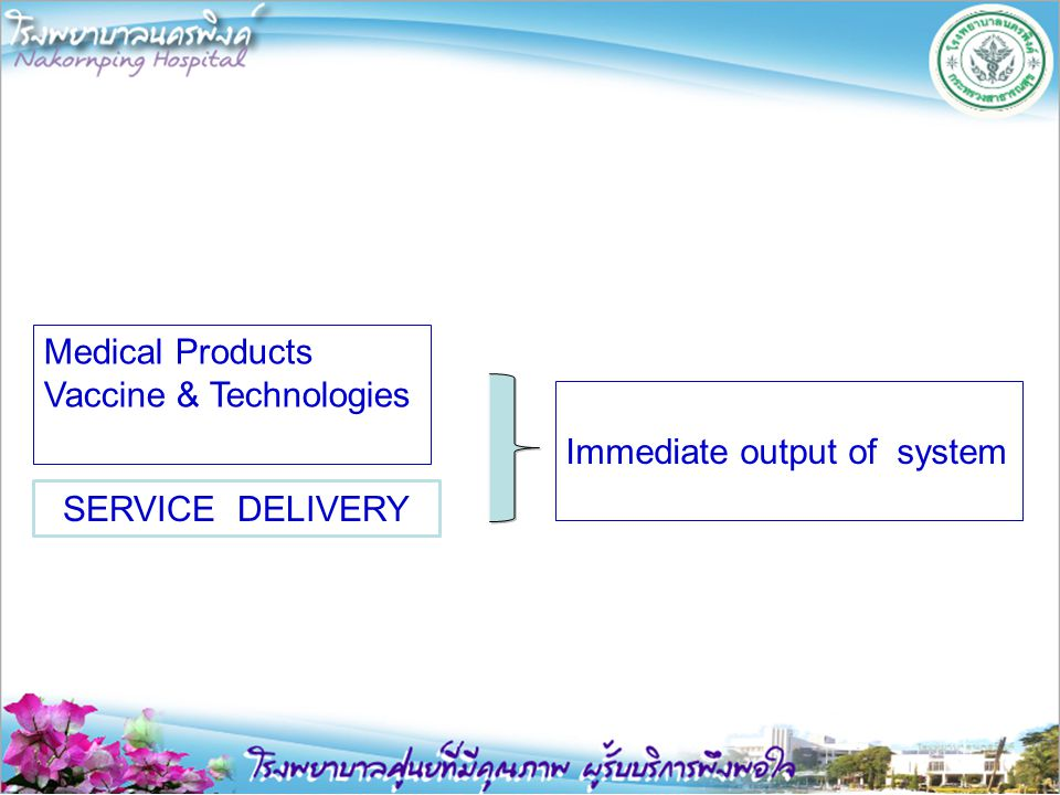Medical Products Vaccine & Technologies Immediate output of system SERVICE DELIVERY