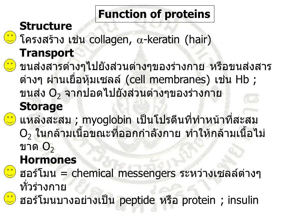 Function of proteins Structure. โครงสร้าง เช่น collagen, -keratin (hair) Transport. ขนส่งสารต่างๆไปยังส่วนต่างๆของร่างกาย หรือขนส่งสาร.