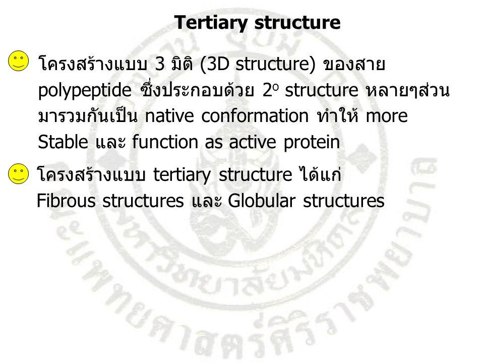 Tertiary structure โครงสร้างแบบ 3 มิติ (3D structure) ของสาย. polypeptide ซึ่งประกอบด้วย 2o structure หลายๆส่วน.