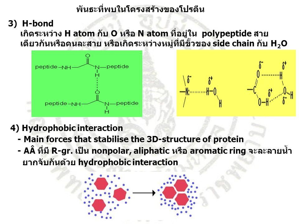 พันธะที่พบในโครงสร้างของโปรตีน