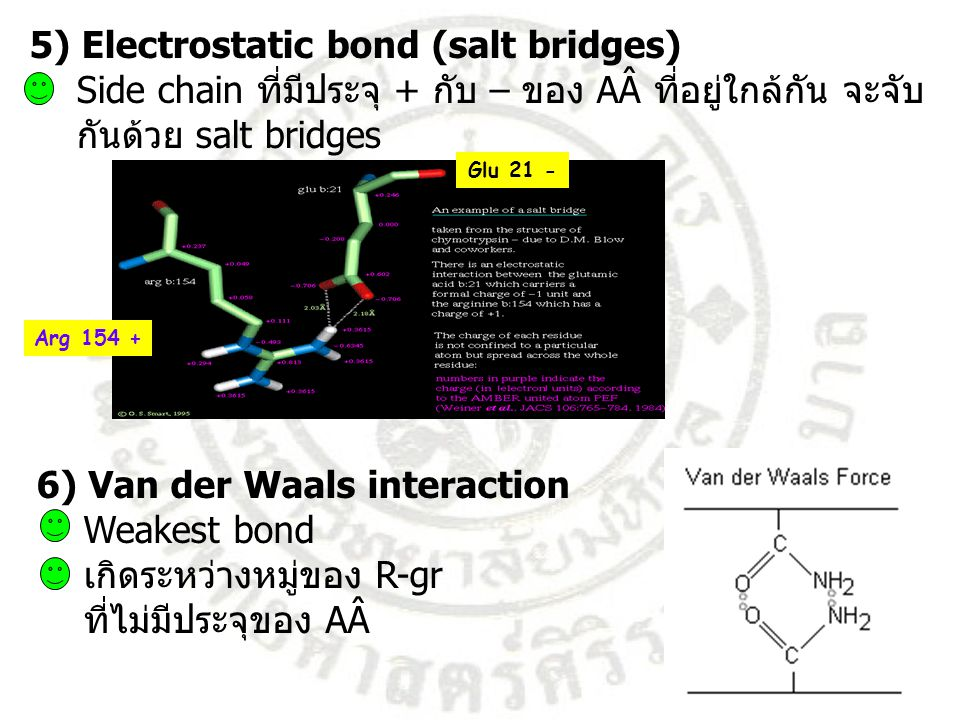5) Electrostatic bond (salt bridges)