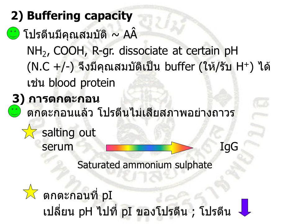 โปรตีนมีคุณสมบัติ ~ AÂ NH2, COOH, R-gr. dissociate at certain pH