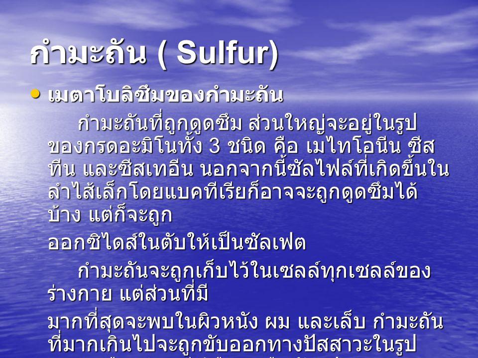 กำมะถัน ( Sulfur) เมตาโบลิซึมของกำมะถัน