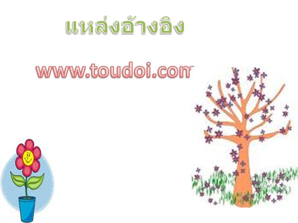 แหล่งอ้างอิง www.toudoi.com