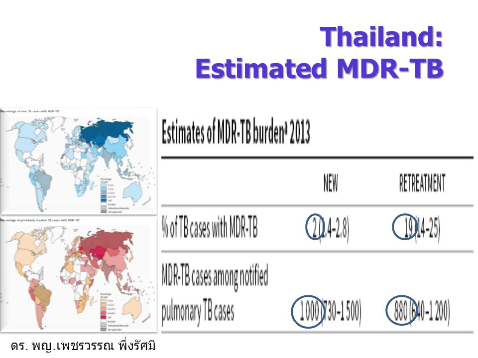 Thailand: Estimated MDR-TB