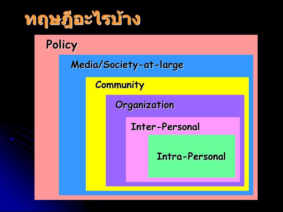 ทฤษฎีอะไรบ้าง Policy Media/Society-at-large Community Organization