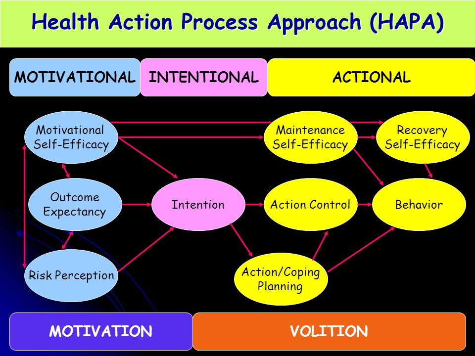 Health Action Process Approach (HAPA)