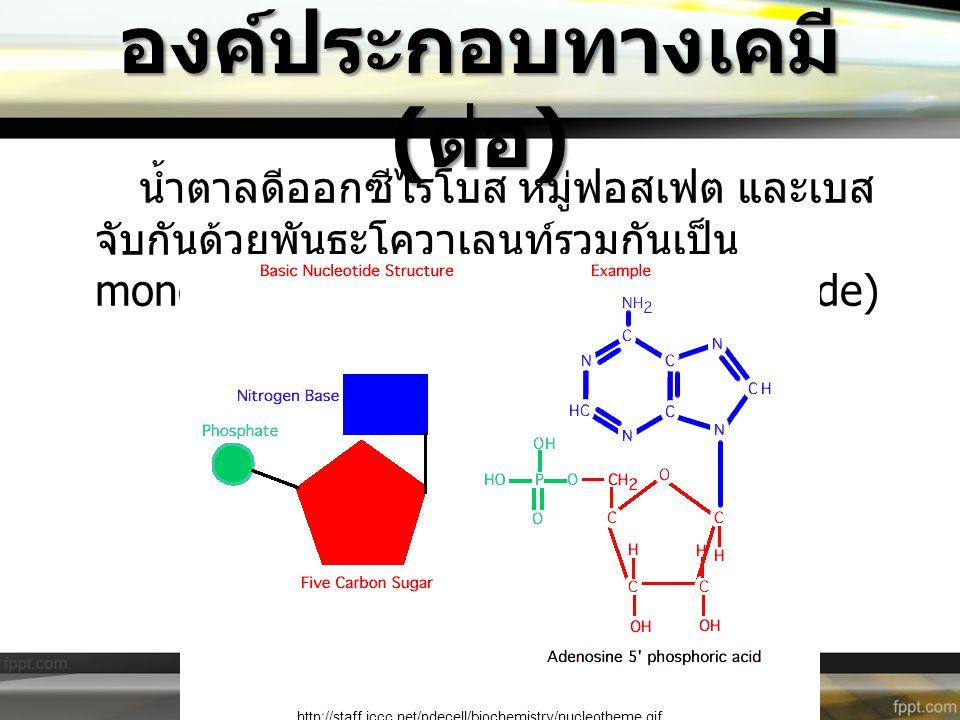 องค์ประกอบทางเคมี (ต่อ)