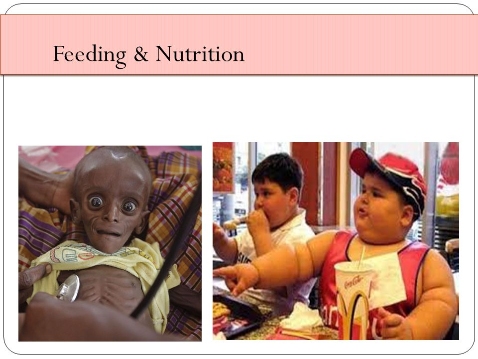 Feeding & Nutrition