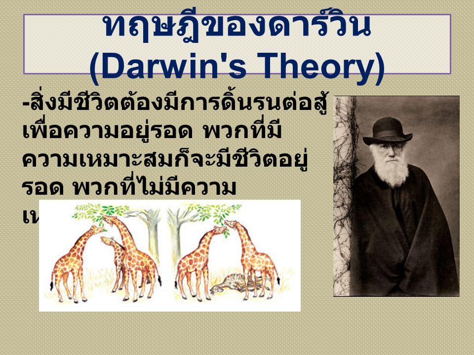 ทฤษฎีของดาร์วิน (Darwin s Theory)