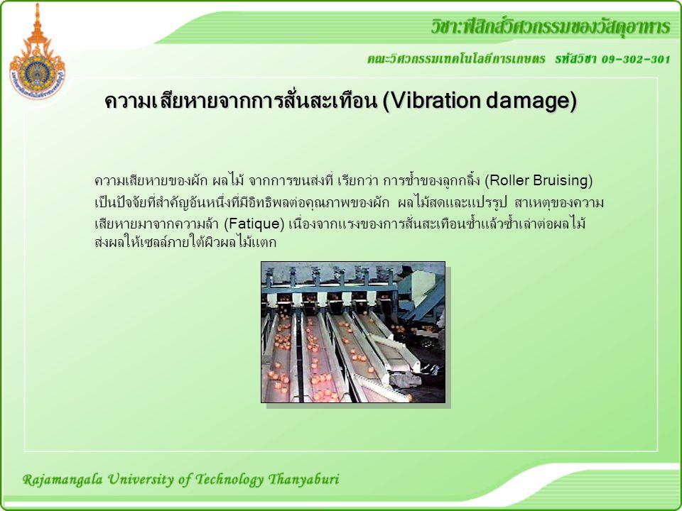 ความเสียหายจากการสั่นสะเทือน (Vibration damage)