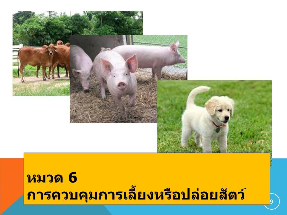 หมวด 6 การควบคุมการเลี้ยงหรือปล่อยสัตว์