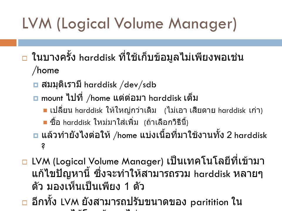LVM (Logical Volume Manager)