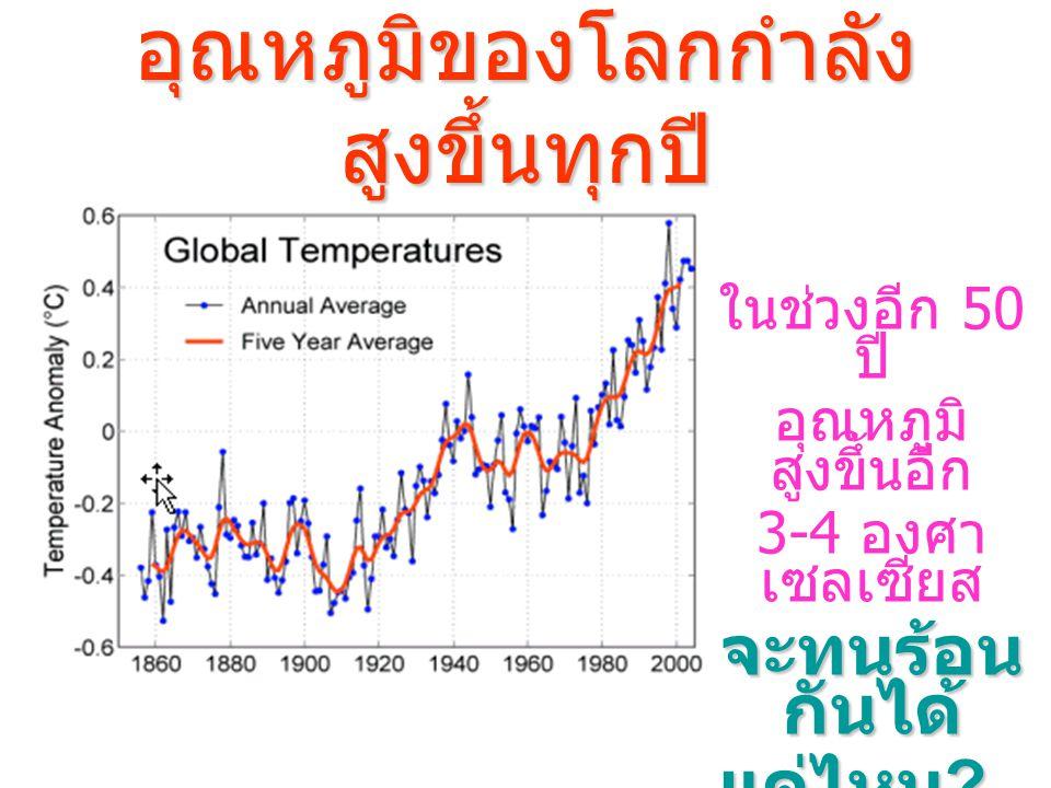 อุณหภูมิของโลกกำลังสูงขึ้นทุกปี