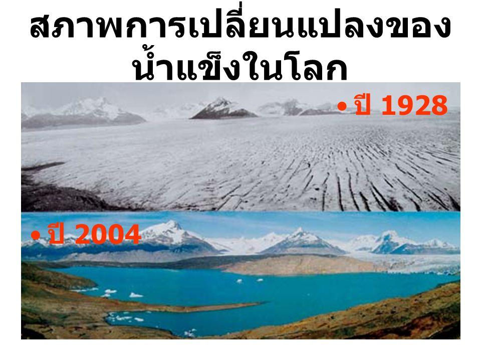 สภาพการเปลี่ยนแปลงของน้ำแข็งในโลก