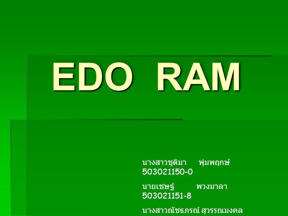 EDO RAM นางสาวชุติมา พุ่มพฤกษ์ 503021150-0
