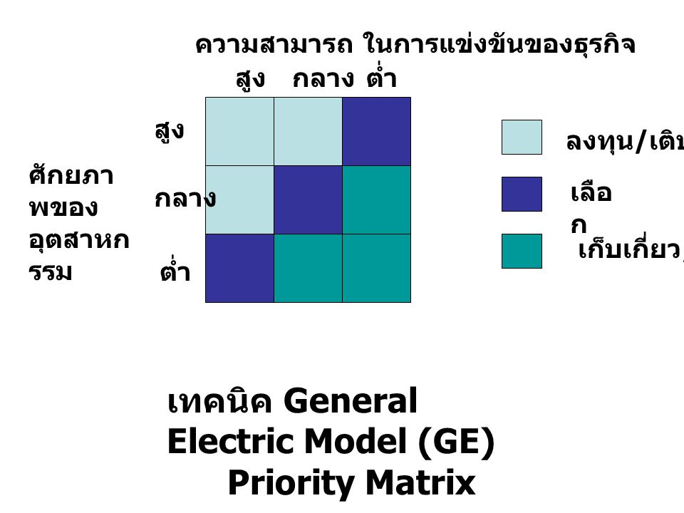 เทคนิค General Electric Model (GE) Priority Matrix
