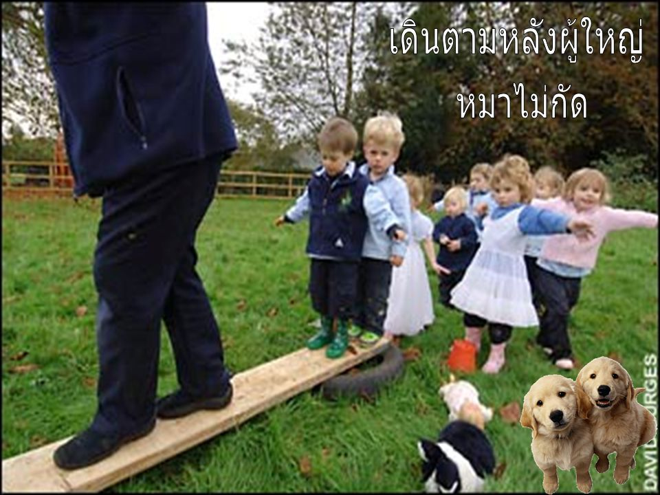 เดินตามหลังผู้ใหญ่ หมาไม่กัด