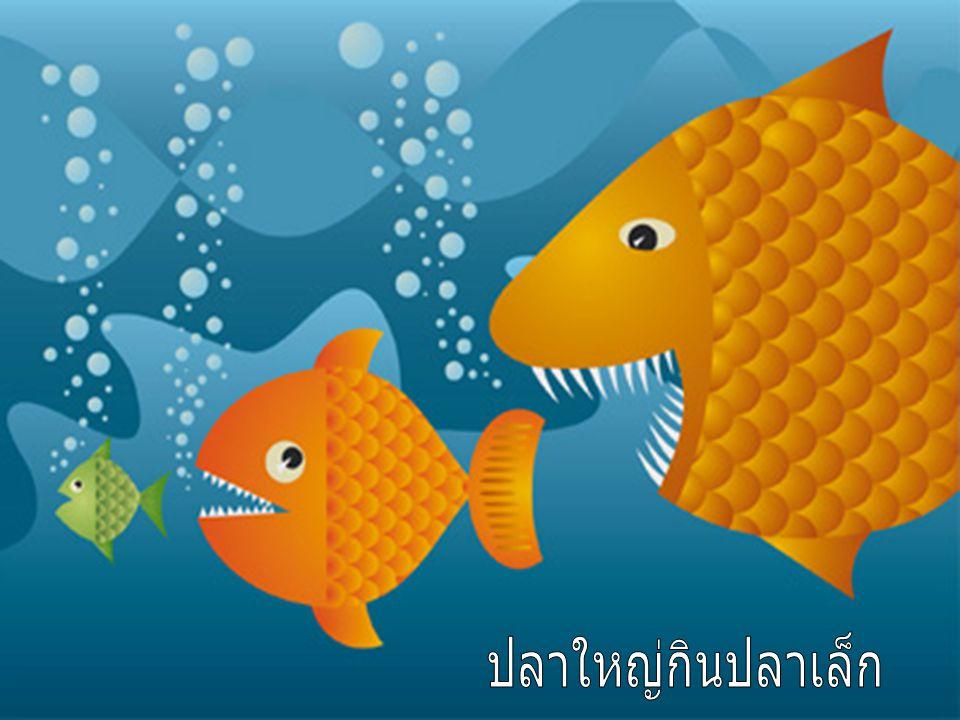 ปลาใหญ่กินปลาเล็ก