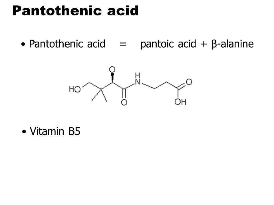 Pantothenic acid Pantothenic acid = pantoic acid + β-alanine
