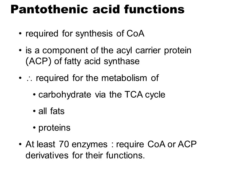 Pantothenic acid functions