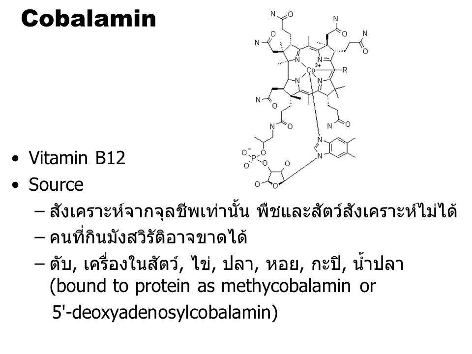 Cobalamin Vitamin B12 Source