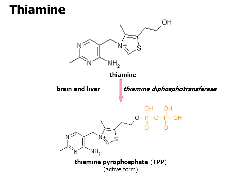 thiamine pyrophosphate (TPP)