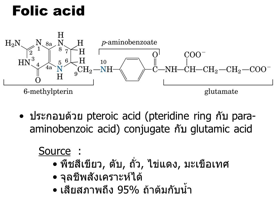 Folic acid ประกอบด้วย pteroic acid (pteridine ring กับ para-aminobenzoic acid) conjugate กับ glutamic acid.